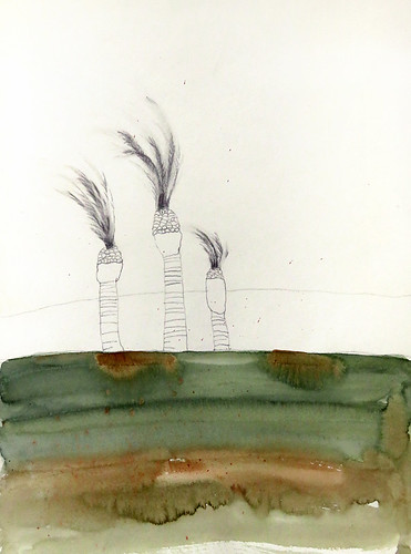 Pencil & watercolour sketch of date palms blowing in the wind in Morocco