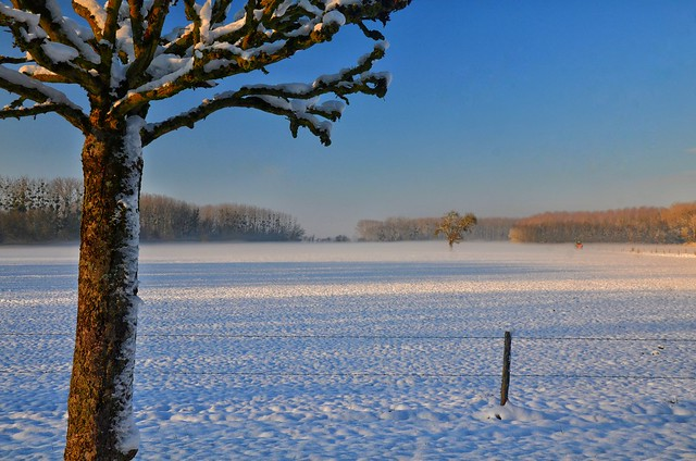 This Winter in the Loire Valley