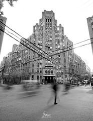 Gotham Walks