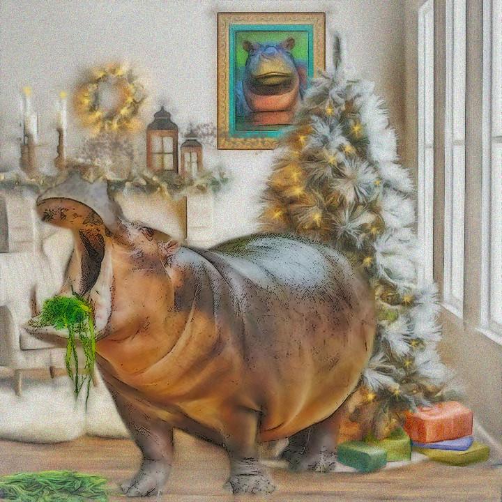 Hippo For Christmas.Hippo For Xmas Link I Want A Hippopotamus For Christmas P