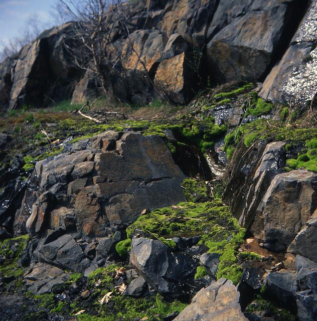 Granite and Moss