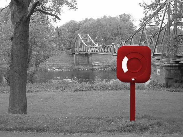 Red in Rickerby Park