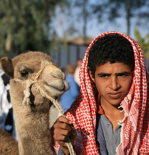 Bedouin | by liber