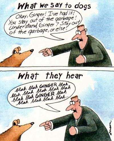 """Image result for far side what dogs hear"""""""