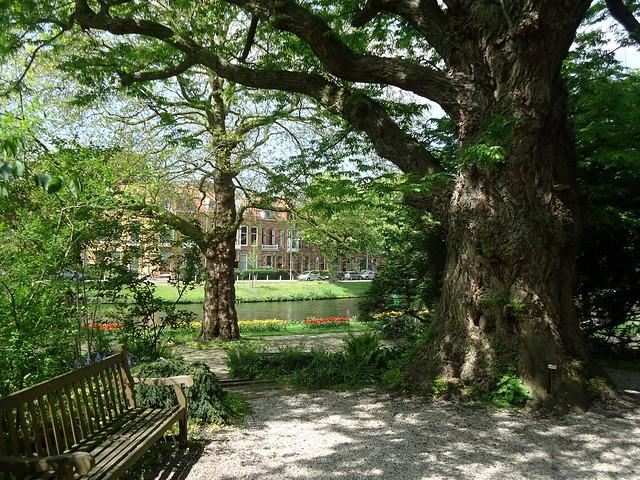 Hortus Botanicus