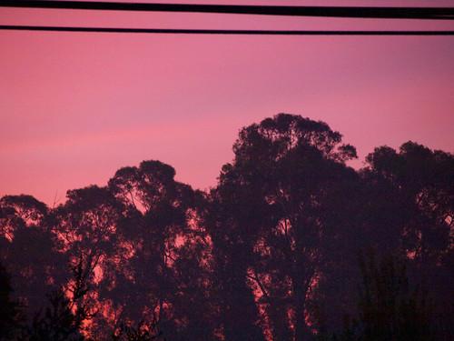 2015 dstreet hayward sunrise