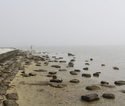 florida pineislandstatepark beach fog gulfcoast