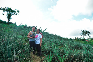 Pineapple Farm, Tagaytay City, PH | by Are & Madj Adventures
