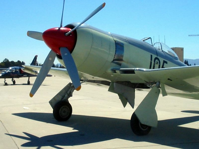 Hawker Sea Fury FB.11 4