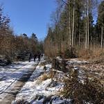 2018_02_13 Bramberg (29)