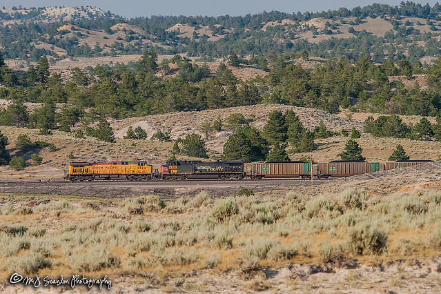 UP 6524 | GE AC4400CW | BNSF Orin Subdivision