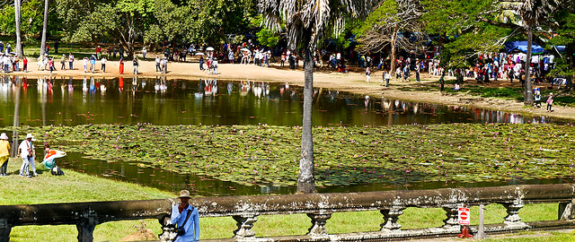 photo - Northern Reflection Pond, Angkor Wat