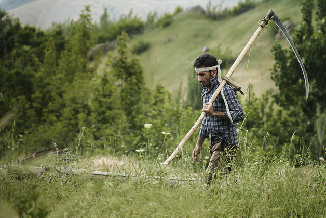 Tribe farmer