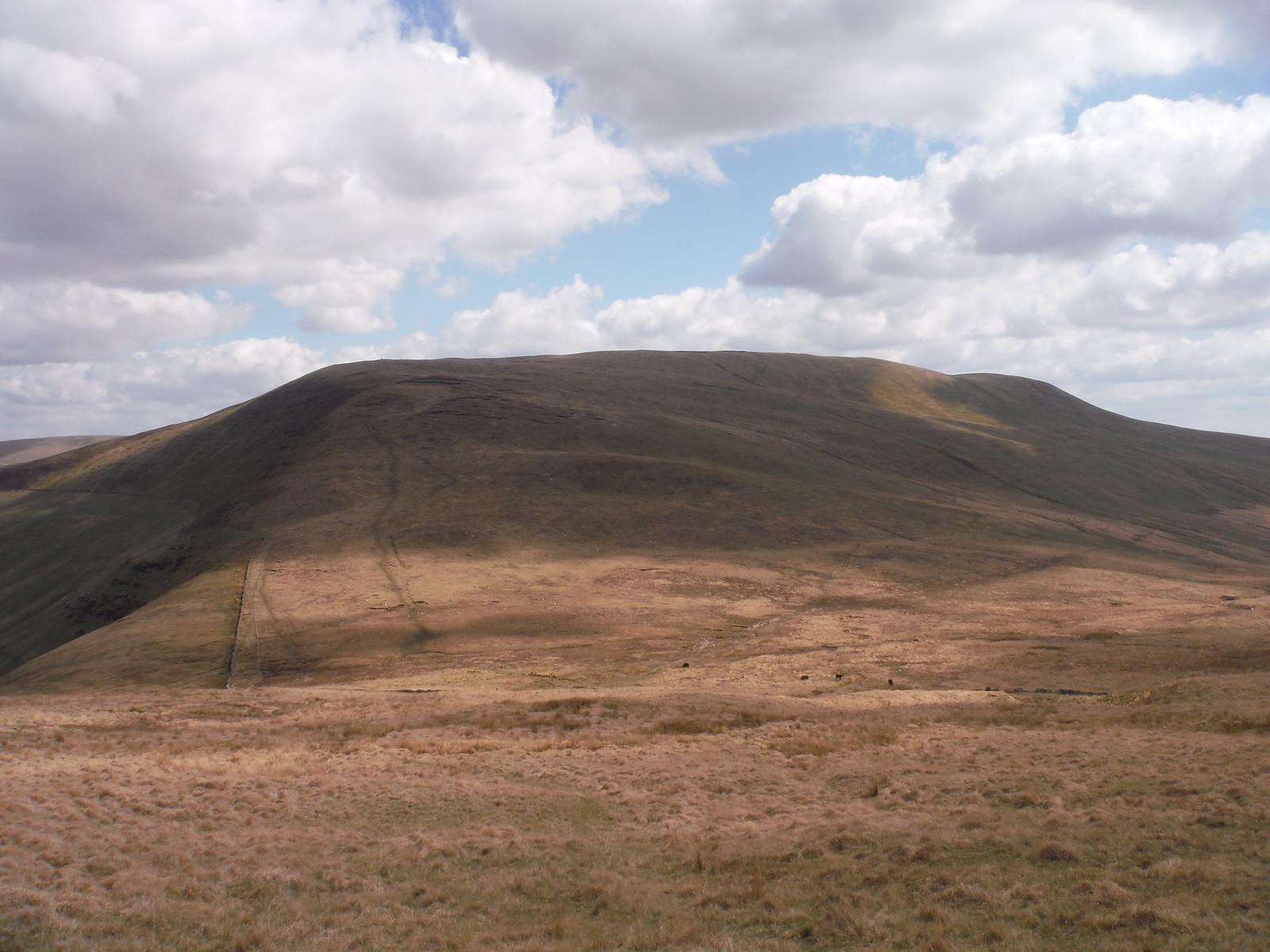 Fan Nedd SWC Walk 307 - Fforest Fawr Traverse (Craig y Nos to Llwyn-y-celyn)