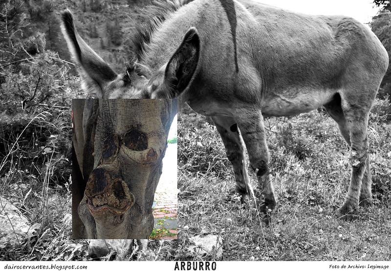 Sancocho (Collage)