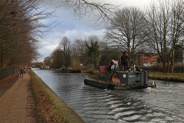 15th February 2018. WB No. 1 Tree Pruning on the Bridgewater Canal at Brooklands, Greater Manchester.