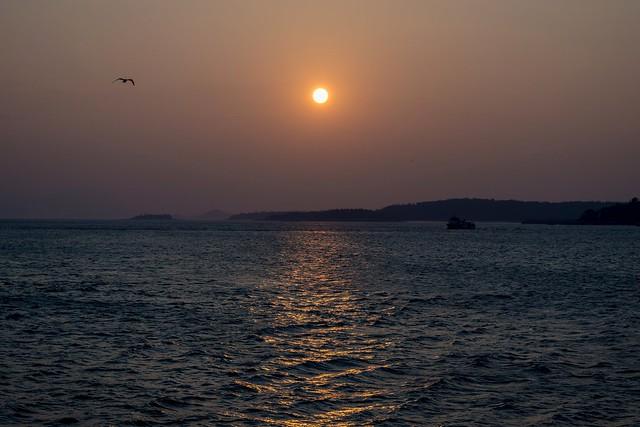 享受著夕陽光 Enjoy the sunset light