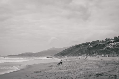 dgtx diegoarayacorvalán canon 5dmarkiii nikonnikkor50mmf14ais 50mm f14 relax blanconegro playa beach dog human humano amor