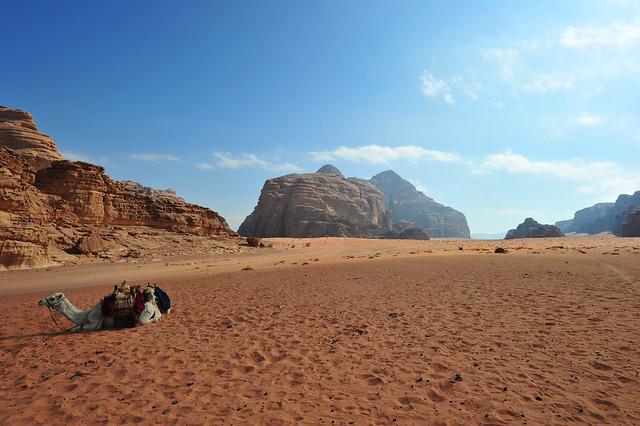 Wadi Rum Desert, Jordan 2 (179)