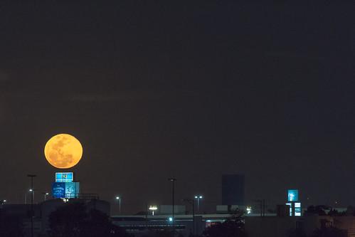 Luna llena yucateca