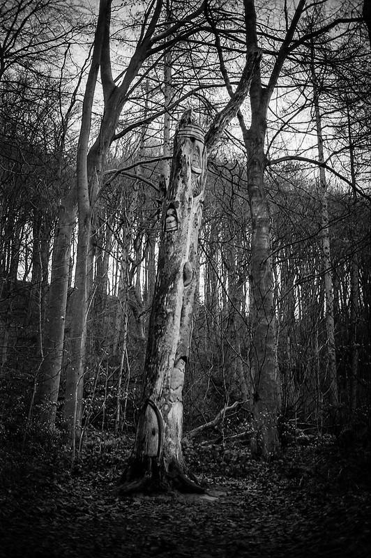 FILM - Tree house