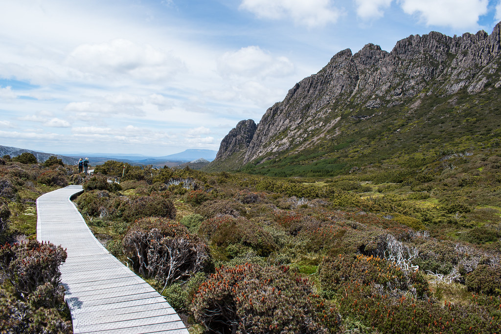 20180110 132 Tasmania Hike near Cradle Mountain