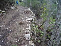 Le chemin du Carciara aval et ces nombreux soutènements en RG de la Figa Bona