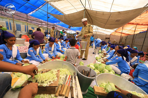 Preparation of Langar (community kitchen)