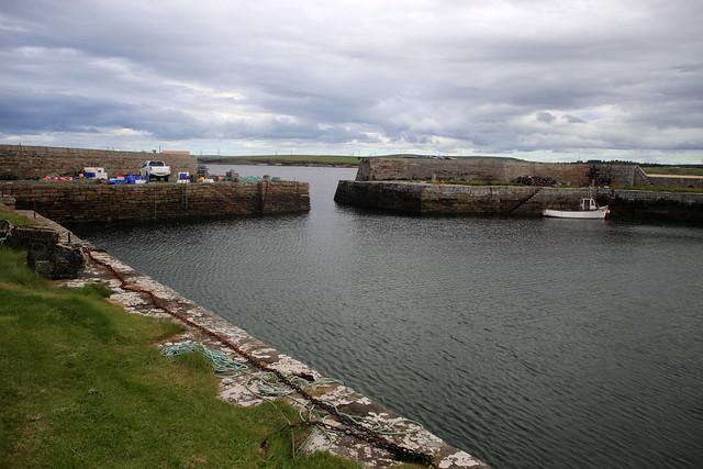 Fresgoe Harbour near Reay