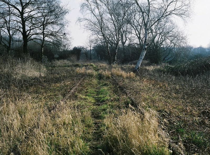 The disused Portishead to Pill railway