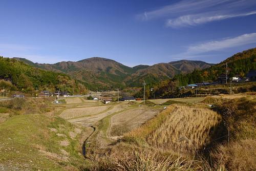 autumn fukuchiyama japan kyoto redleaves shimonojo 下野条 京都 日本 福知山 秋天 紅葉 關西 fukuchiyamashi kyōtofu jp