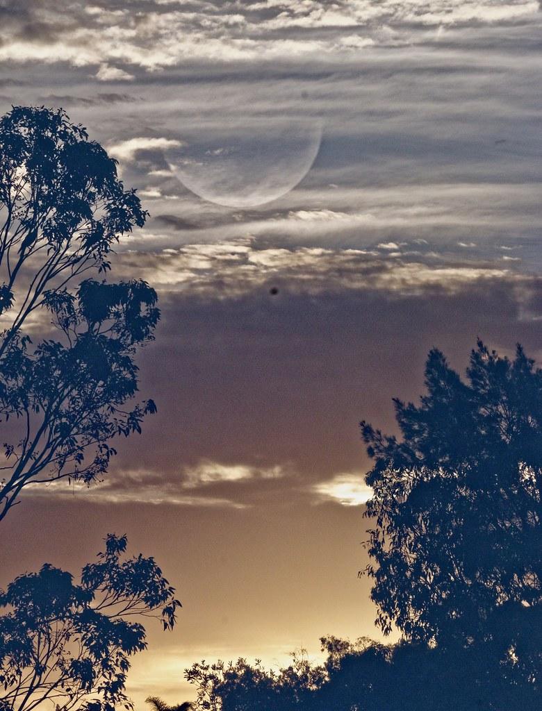 The celestial moon