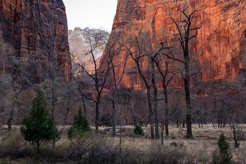 zion canyon zionnationalpark templeofsinawava landscape