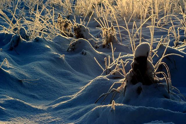 Lumi / Snow