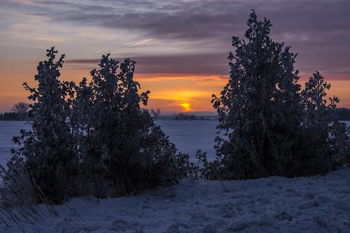 365dayproject 365 nikond7200 d7200 sunrise winter