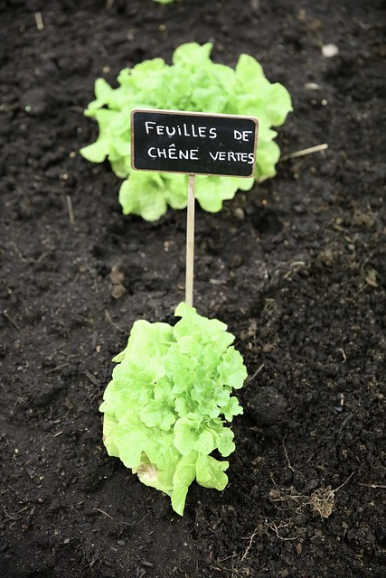 Yvelines et Hauts-de-Seine au salon de l'agriculture 2018