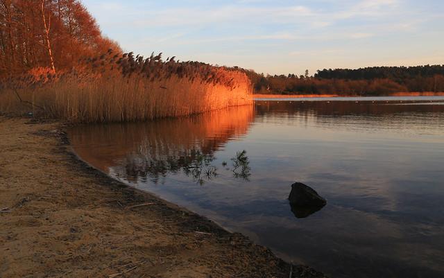 Frensham pond sunset