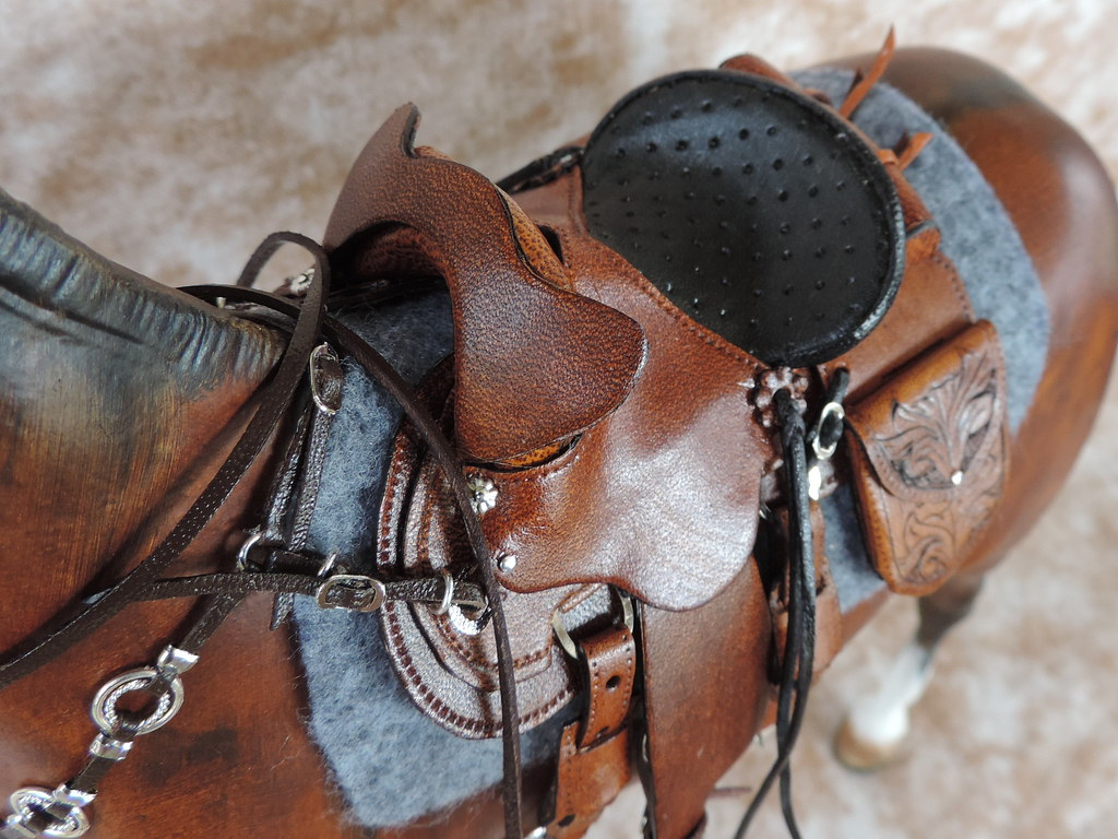 Brazilian Gaited Mule with Gaited saddle | Donna A | Flickr