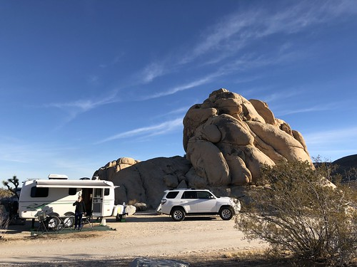 Joshua Tree - camp 2