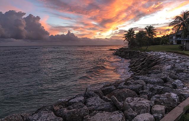 coast_dawn_sunrise_sea_012218