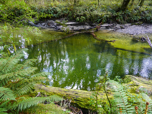 Impossibly green water | by snackronym