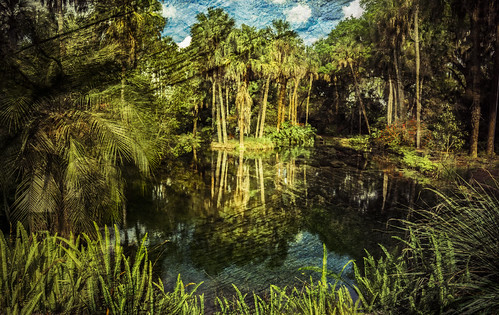 trees reflection nature water garden us pond unitedstates florida boktower landscapephotography lakewales