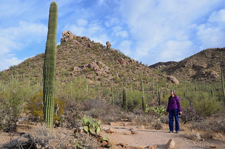 Tucson Gilber Ray Brown Mountain Hike with Linda | by Pierre Yeremian