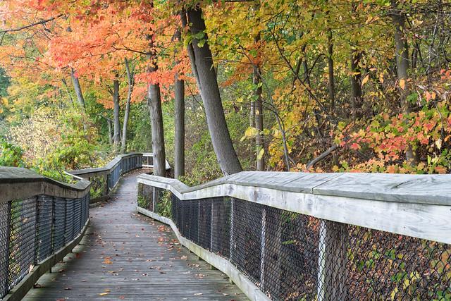 Rogue River Nature Trail