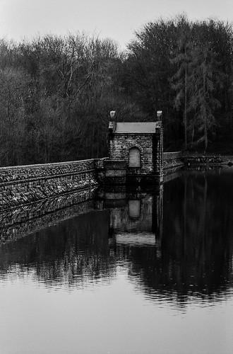 FILM - Dam wall | by fishyfish_arcade