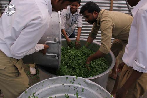 Langar preparation