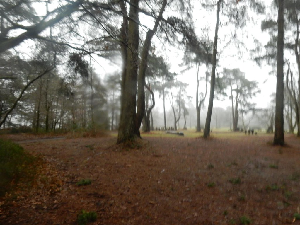 Hindhead Common Milford to Haslemere
