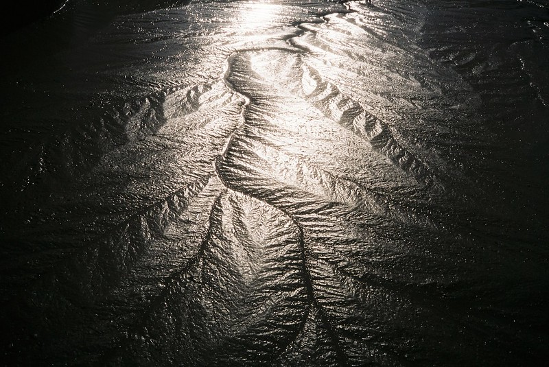 Mud, light