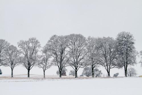 Winter in Ebersberg, Munich