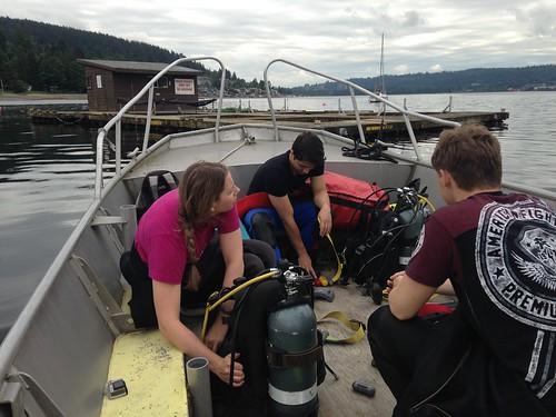 12. Jun 3 sea pen dive   by mossomcreek3